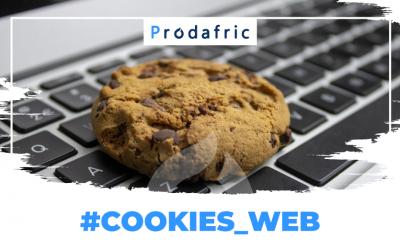 Qu'est-ce que les cookies web ?